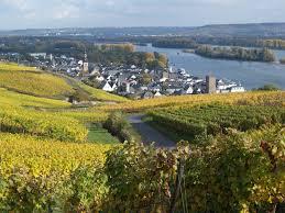 Rheingau (Quelle: rheingaulinie.de)